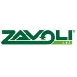 Купить продажа газобаллонное оборудование ГБО Zavoli недорого стоимость отзывы цена